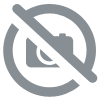 SIEDLE. PRI 602-01 USB. Interface de programmation USB